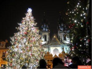 Елка в Праге